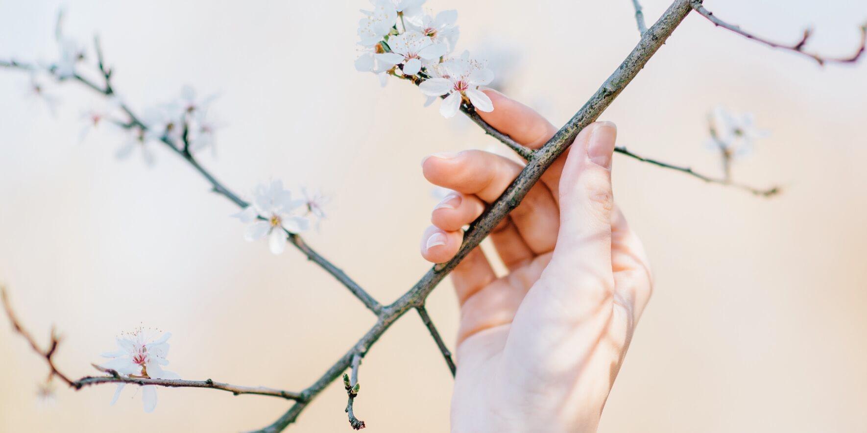 Bien démarrer le printemps
