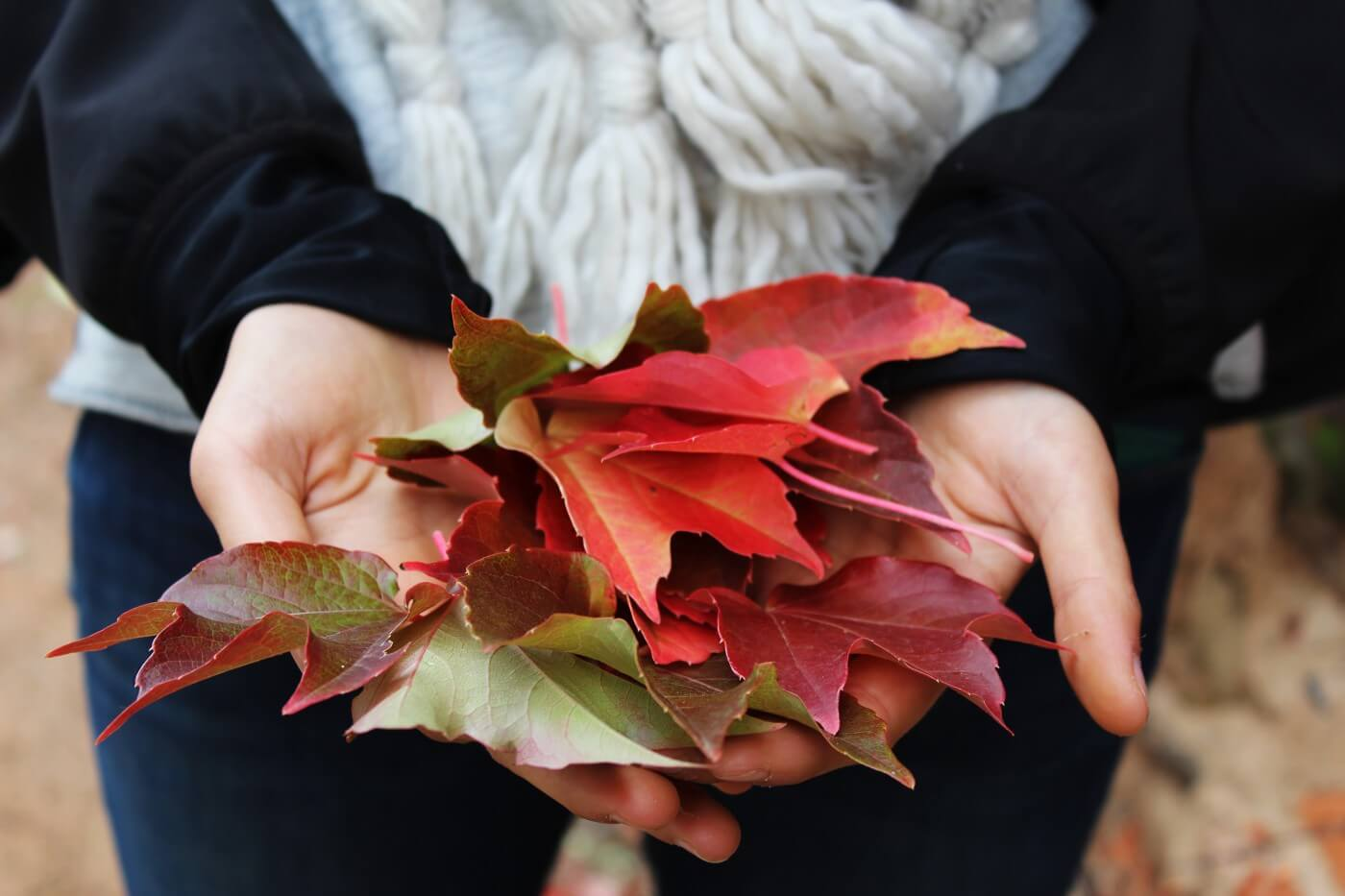 Cure bien-être pour attaquer l'automne